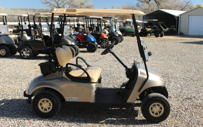 2014 EZGO PDS 48's Golf Cart – Almond Pearl