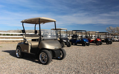2014 EZGO RXV's Golf Cart – Almond Pearl